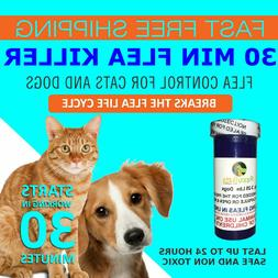 30 CAPSULES Flea Killer For CATS and DOGS 2-25 Lbs. 12 Mg Fa
