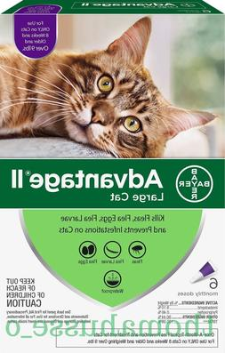 Bayer Advantage II for Large Cats Over 9 lbs - 6 Pack - FREE