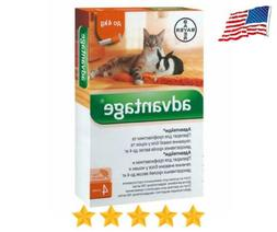 Bayer Advantage for Cats & Kittens Up to 9 lbs  4 Pack