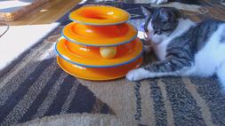 Interactive Tower Of Tracks Cat Toy Bright Colors Pet Exerci