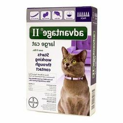 advantage ii large cat 6 pack flea