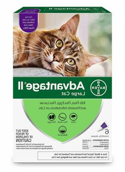 Bayer Advantage II Flea Prevention for Large Cats over 9 lbs
