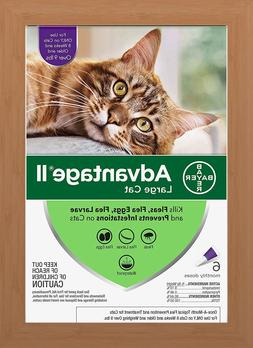 Bayer Advantage II Flea Treatment for Large Cats Over 9 lbs