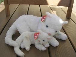 TY Beanie Babie and BUDDY - TY STARLETT the White Kitten Cat 872ff7ea811a