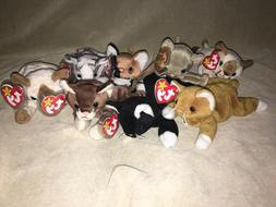 TY Beanie Babies All Cats Lot 1990's