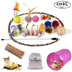 MIBOTE 24Pcs Cat Toys Kitten Catnip Toys Assorted, 2 Way Tun