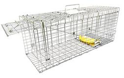 Large Collapsible Humane Live Animal Trap Perfect For Raccoo