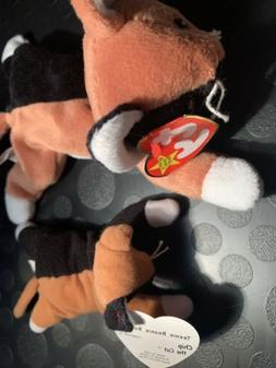🐱 Crazy For Cats Beanie Baby Bundle! 7 Beanies With Bonus