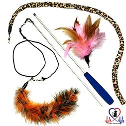 Pet Fit For Life 3 Piece Dual Rod Feather Teaser and Exercis