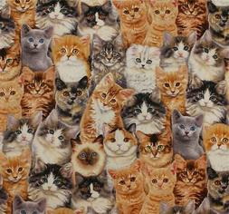 Feline Drive Cat Fabric - Adorable Pets Stacked Cats - Sold