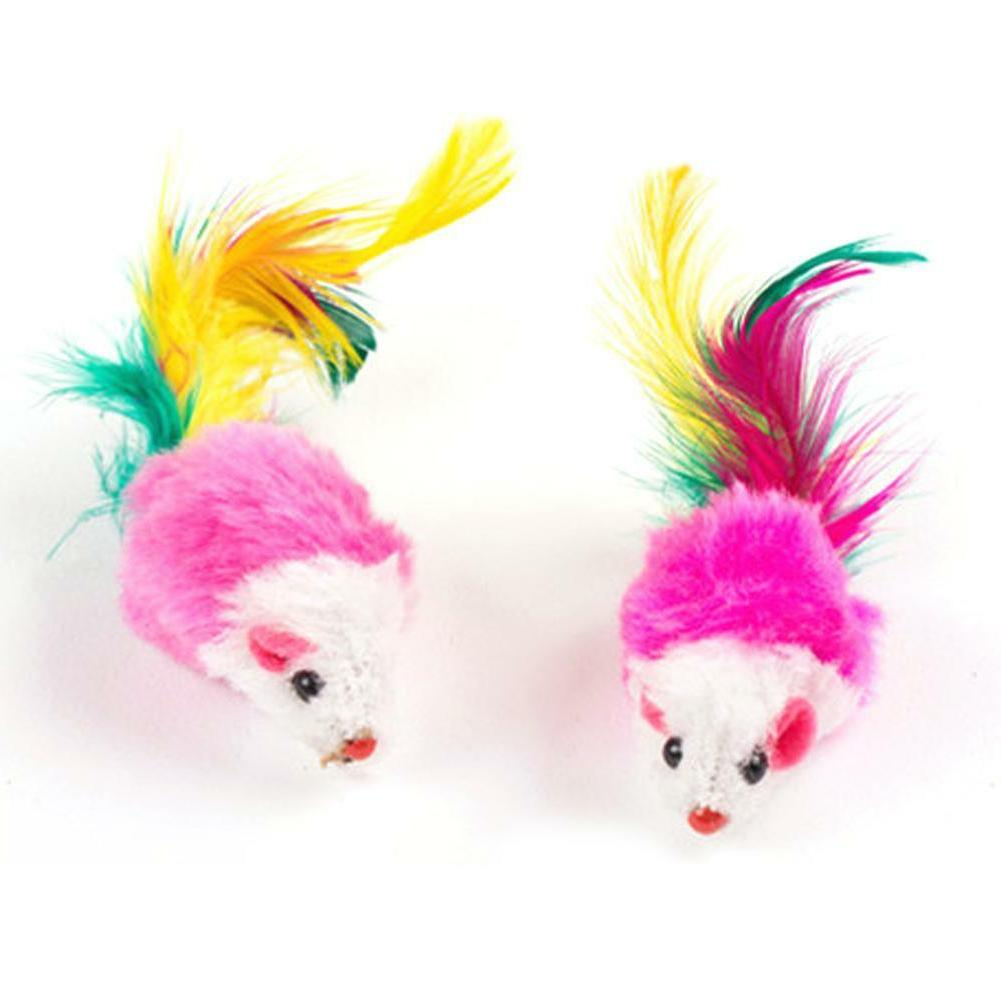 10pcs Cat Toys Playing Toy For Colorful Feather