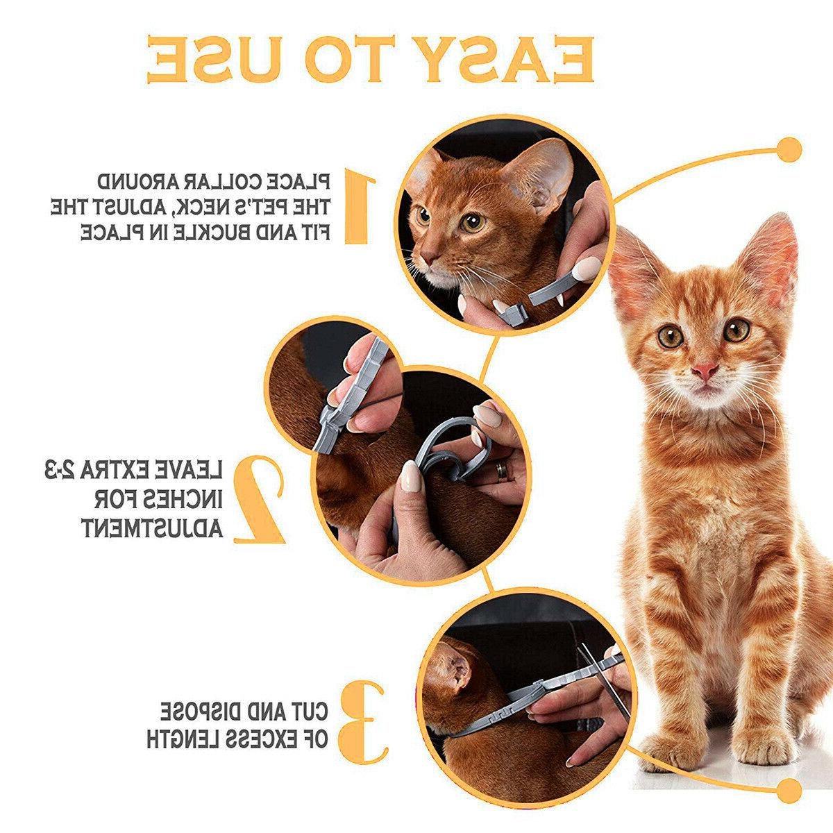 2pcs Collar Adjustable 8 Month Protection