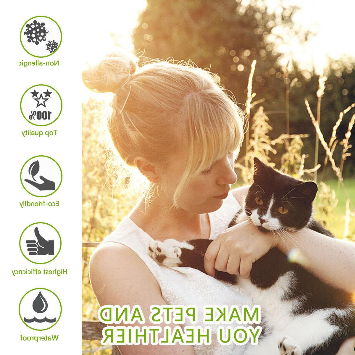 2pcs Collar Cats With Adjustable Waterproof Protection