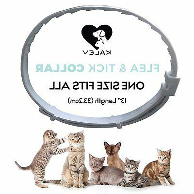 Flea And For Medium/Large Cats Vet Protection