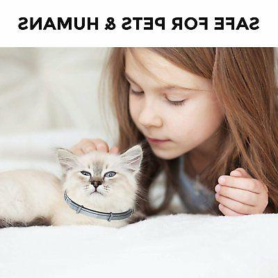 Flea Tick For Medium/Large Cats Protection