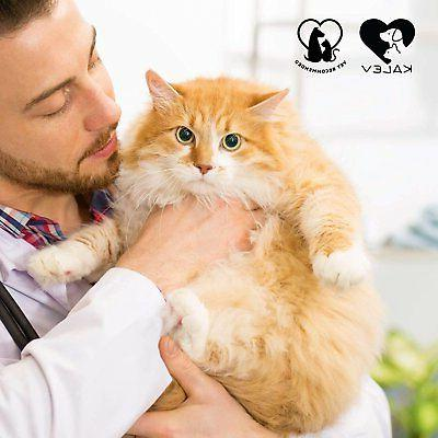 Flea And Tick Collar For Cats Vet Protection