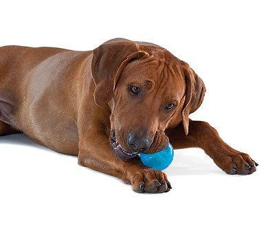 PETSTAGES ORKA TENNIS BALL TEETHING DOG TOY PUPPY FREE SHIP