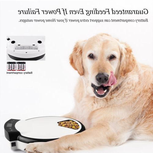 Automatic Meal Food Bowl Dish for Cats Animal