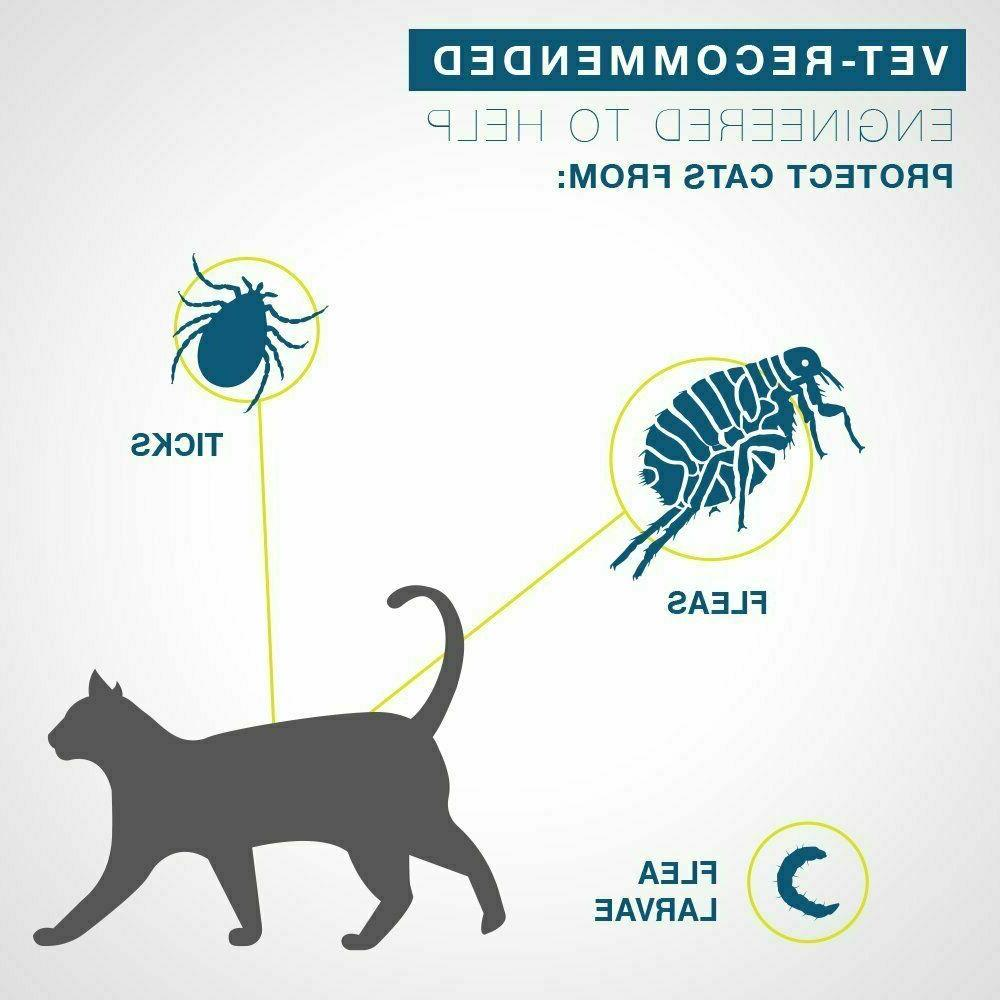 Bayer Tick Collar for 8 Protection,Cat