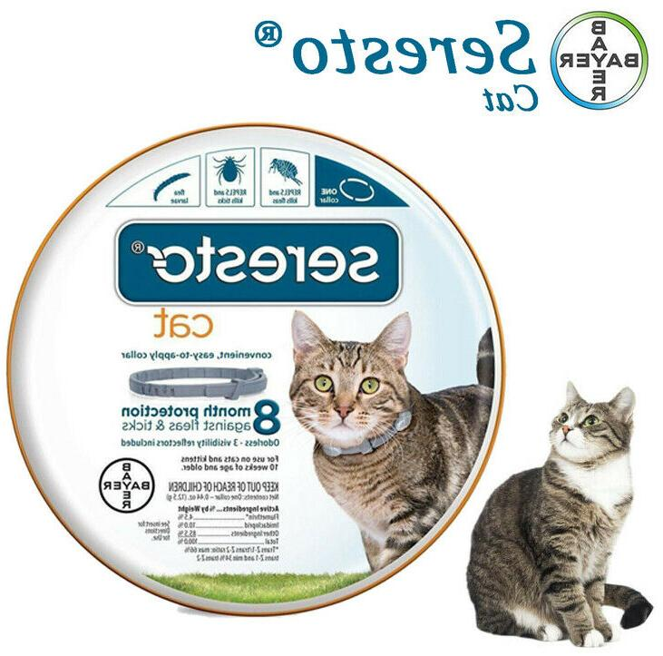 bayer animal health flea and tick collar