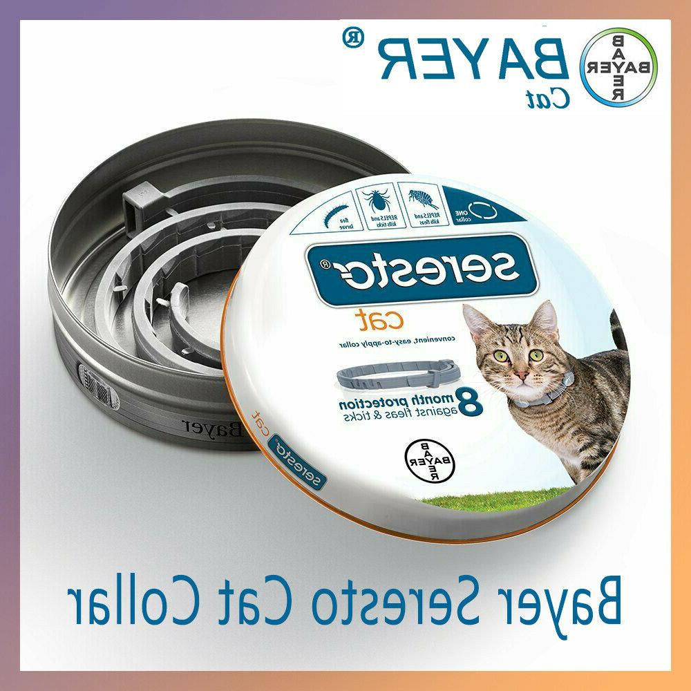 bayer flea and tick collar for cat