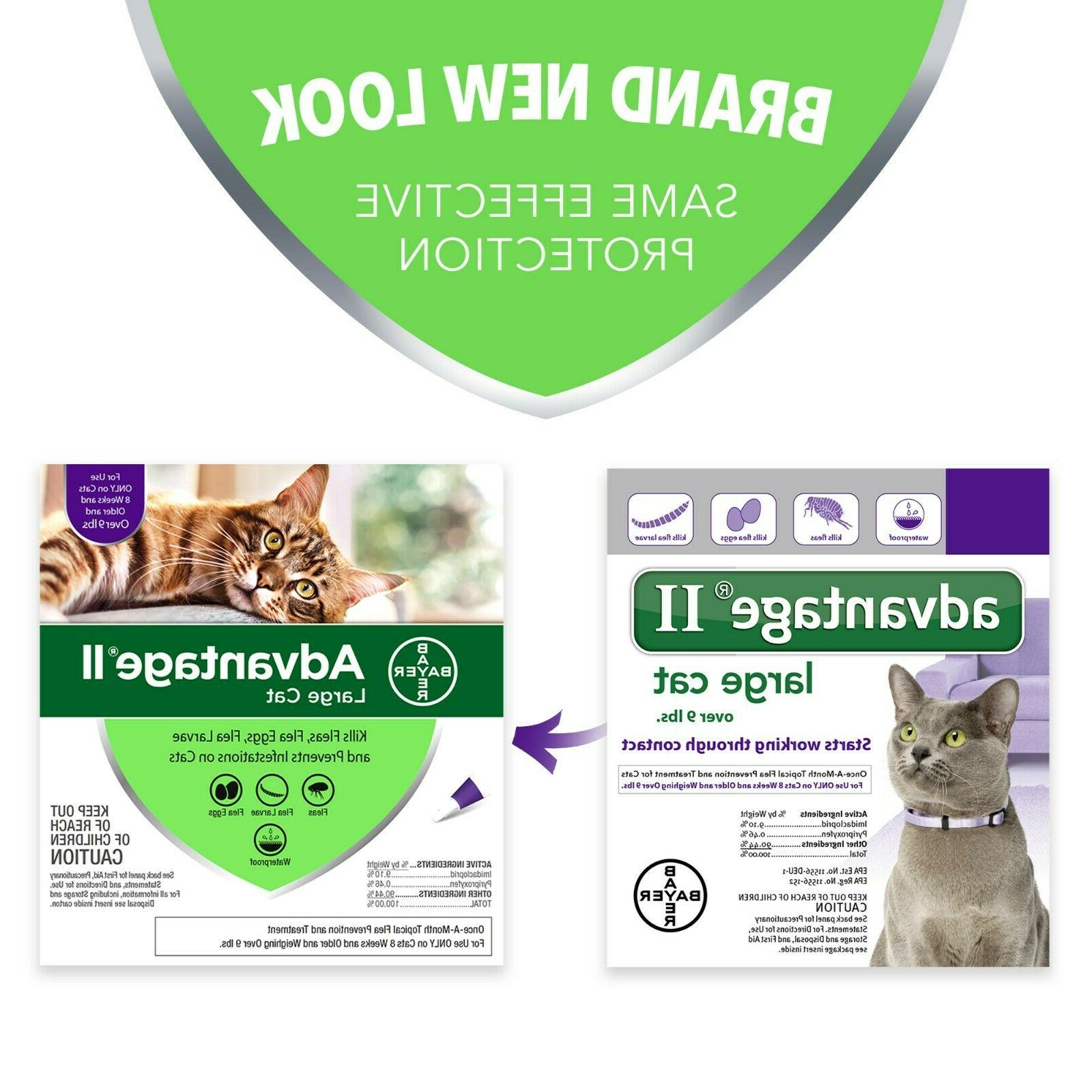 Bayer Advantage Prevention Large Cats over 9 lbs pack Brand