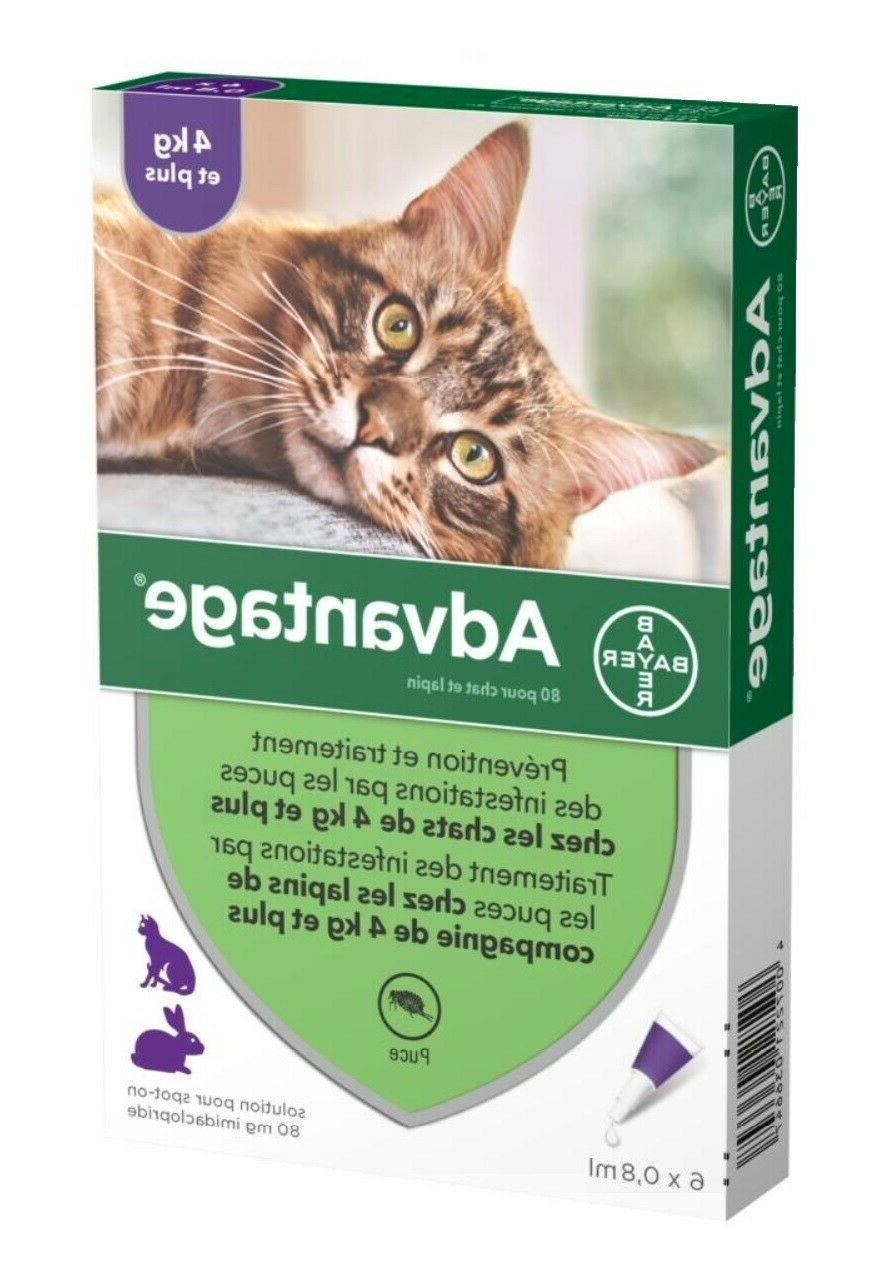 bayer purple for cats over 9 lbs