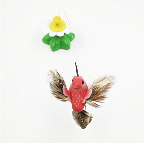 ZIYAN Bird Toy Pet Cats, Electric Toy A Tape,