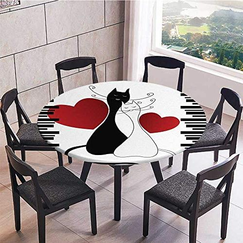 Easy-Care in Pets for Party, Wedding