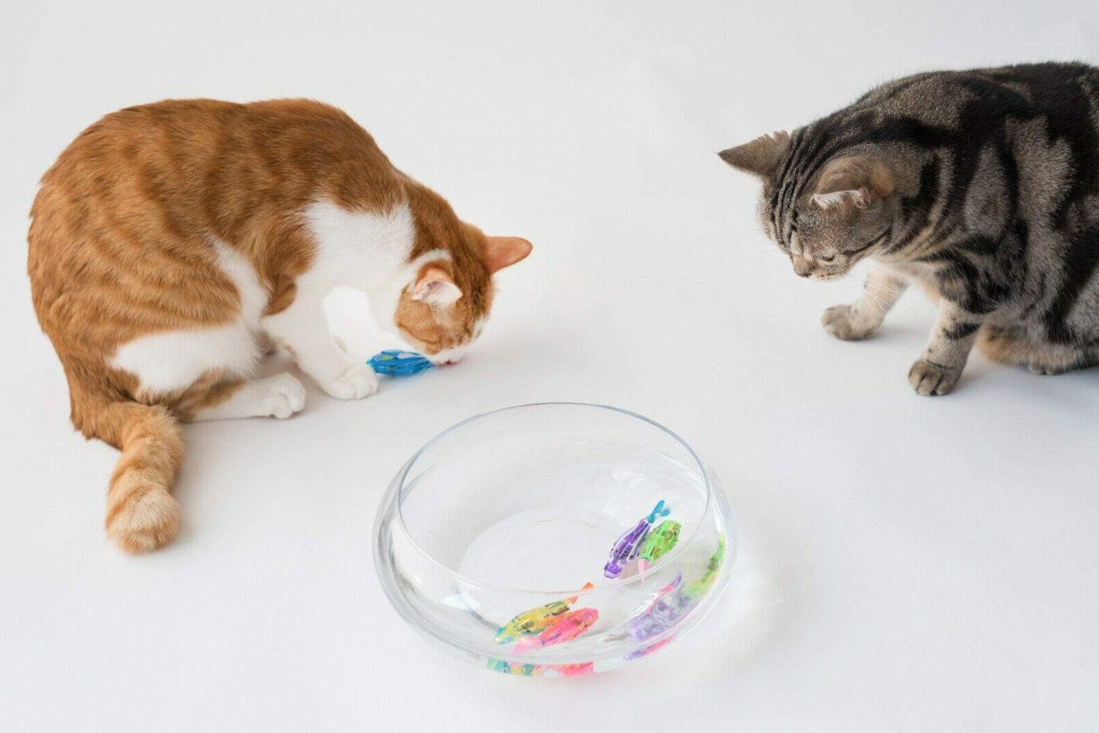 Interactive Swimming Toy Cat with LED