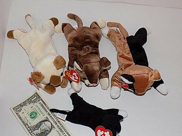 Lot 4 Ty Beanie Baby Kittens Snip Pounce Retired Animals