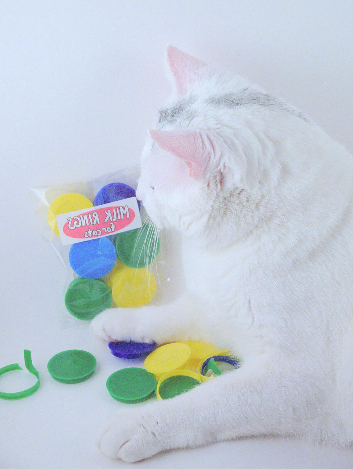 Milk Cats with Irresistable Ring Tab Colorful
