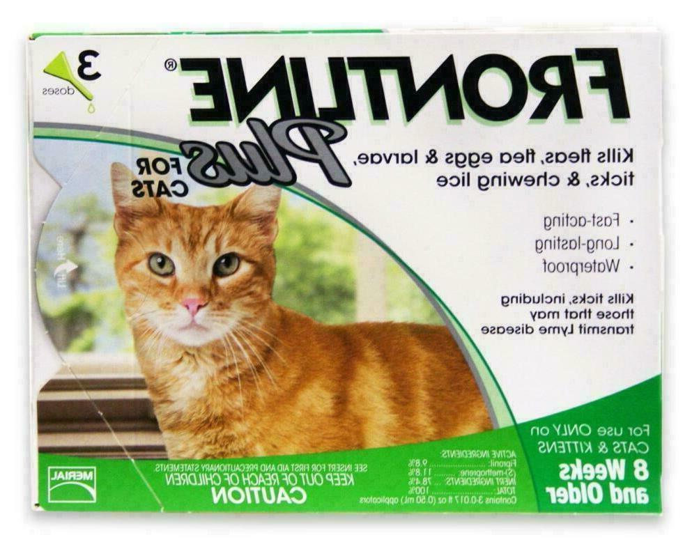 plus 3 month supply for cats over
