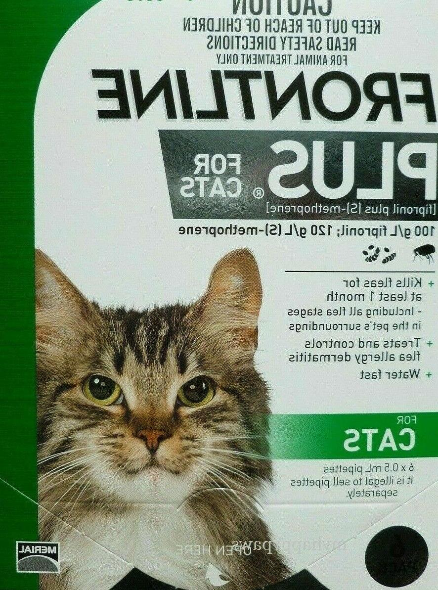 plus for cats 6 months doses flea