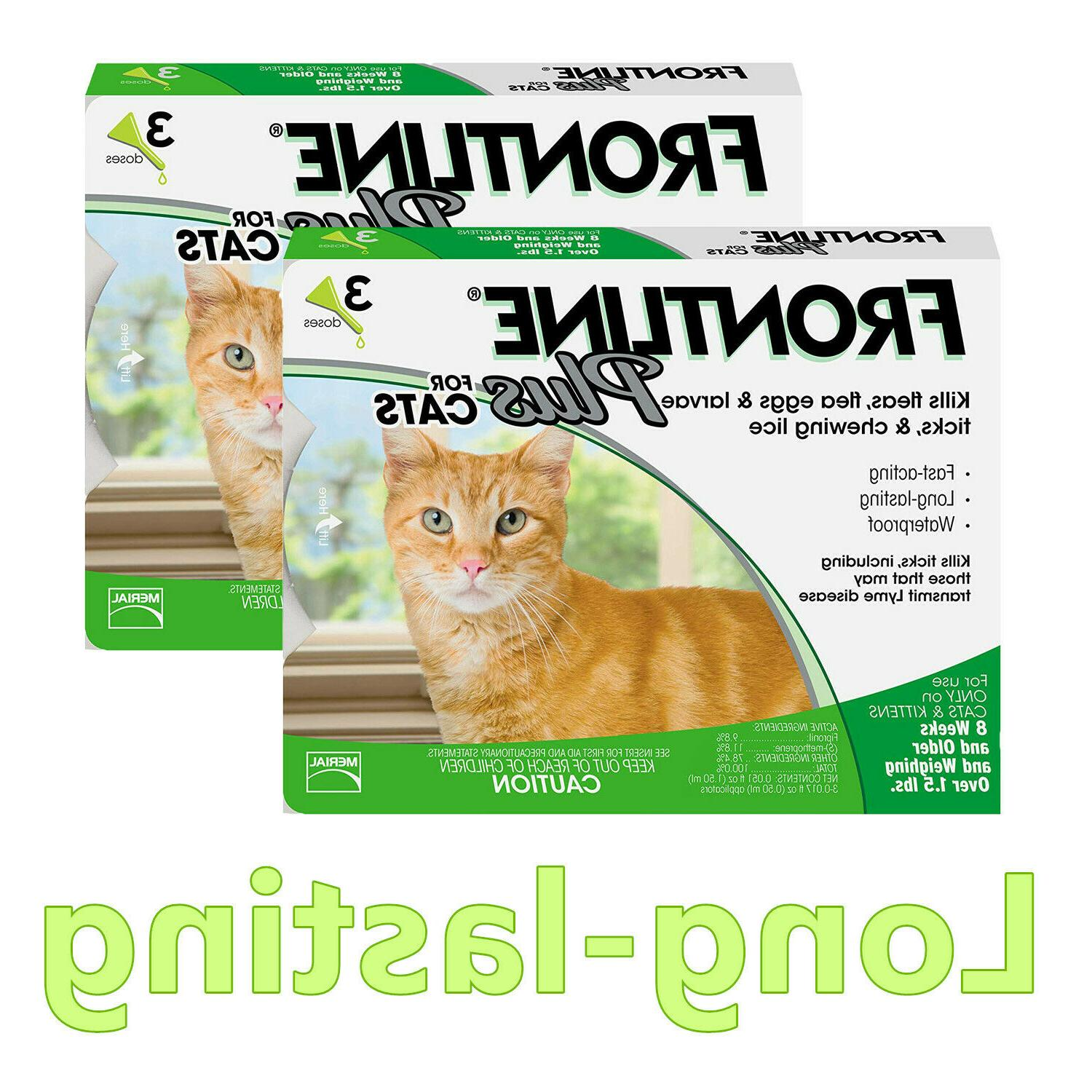plus for cats and kittens 3 pack