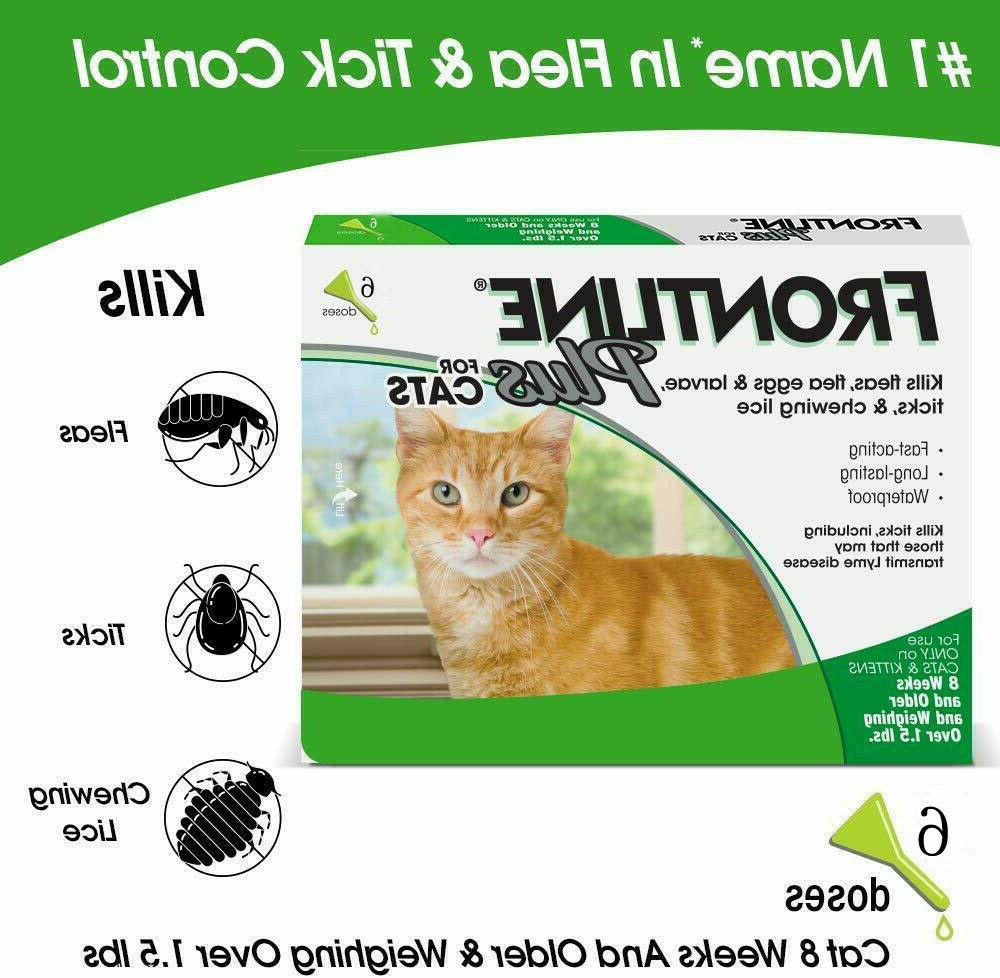 6 Cat Remedy For Cats for 6 Month Supply