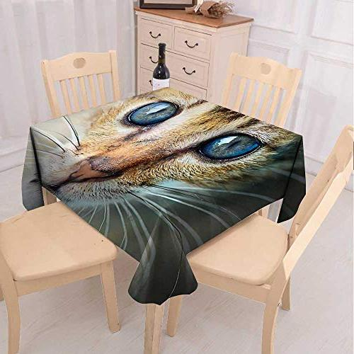 UHOO2018 Square/Rectangle Polyester Cat Eye Fuitable Home x