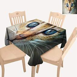 UHOO2018 Square/Rectangle Polyester Tablecloths Cat Eye Fuit